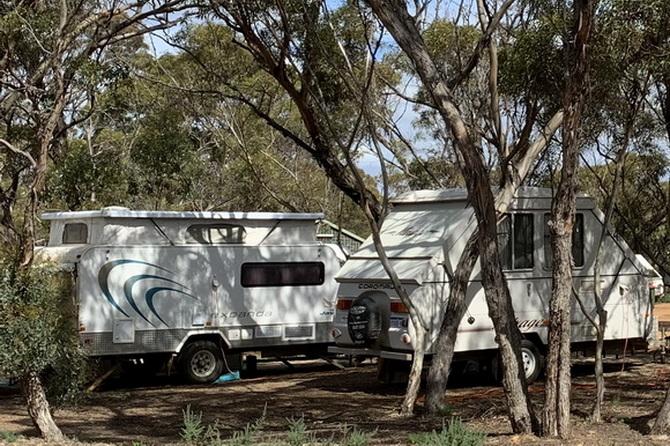 Shady Caravan Sites - Green Haven Tourist Park
